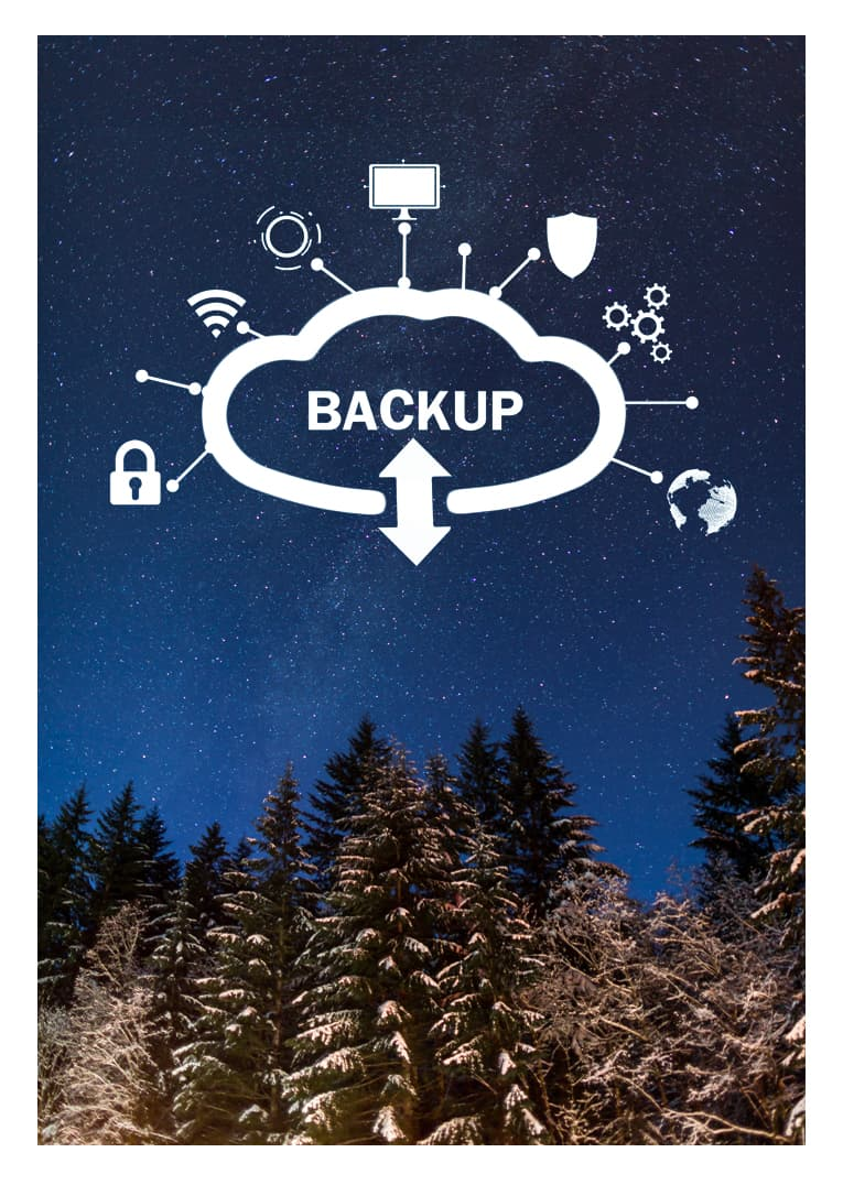 Data Backup Services 1
